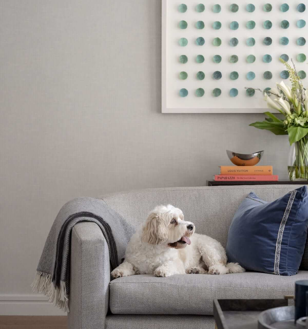 Lansdowne Place | Dog on couch 2B unit